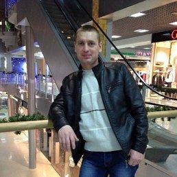 Серёга, 36 лет, Балта