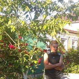 Николай, 36 лет, Алтайское