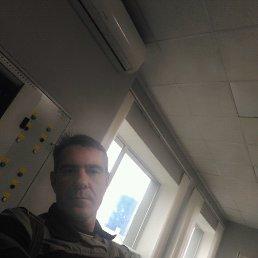 Денис, 42 года, Верхнеднепровский