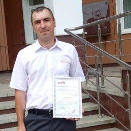 Андрей, 29 лет, Черепаново