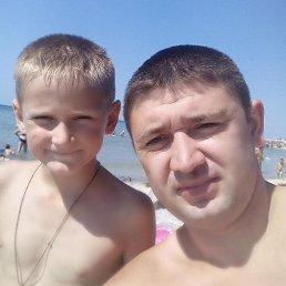 Сергей, 32 года, Кролевец
