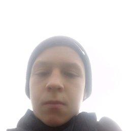 Владислав, 20 лет, Броды