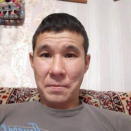 Александр, 37 лет, Городовиковск
