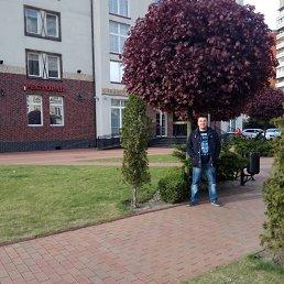 Василий, 39 лет, Калининград