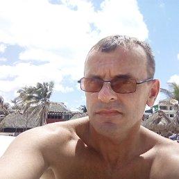 Олег, 44 года, Коломыя