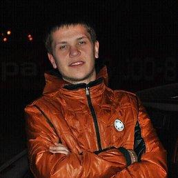 Саша, 28 лет, Луцк
