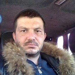 Михаил, 30 лет, Залесово