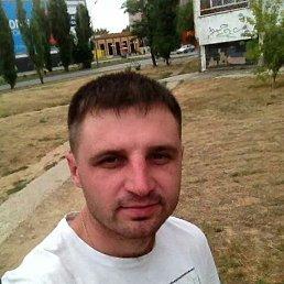 Александр, 30 лет, Ленинградская