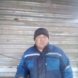 Олимжон, 48 лет, Аксай