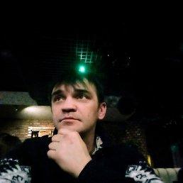 Андрей, 40 лет, Сафоново