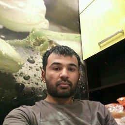 Shaxriyor, 28 лет, Правдинский