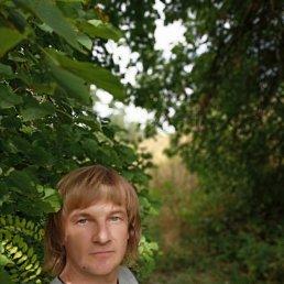 Александр, 41 год, Полтава