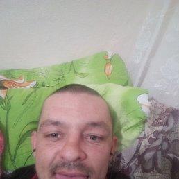 Игор, 28 лет, Реутов