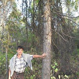 Илья, 48 лет, Саратов
