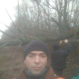 Саша, 36 лет, Купянск