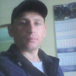 Алексей, 36 лет, Улан-Удэ