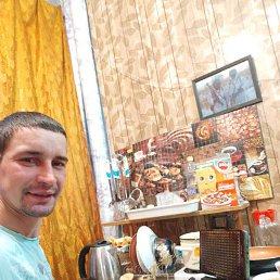 Максим, 27 лет, Галенки