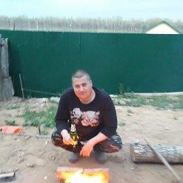 Михаил, 29 лет, Енотаевка