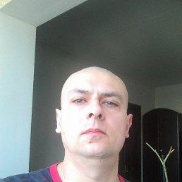 Фото Александр, Киев, 37 лет - добавлено 28 марта 2020