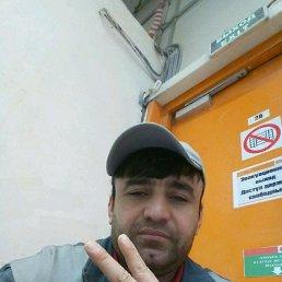 Дима, 29 лет, Московский