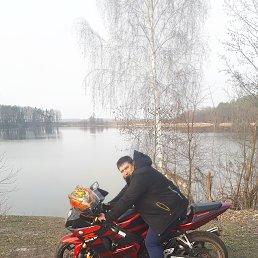 Рома, 28 лет, Брянск