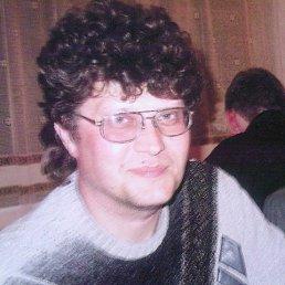 Геннадий, 55 лет, Молодогвардейск