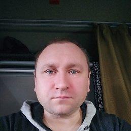 Сергей, 41 год, Нелидово