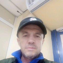 Алекс, 47 лет, Новомосковск