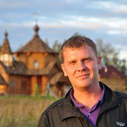 Хитрый, 40 лет, Волоколамск
