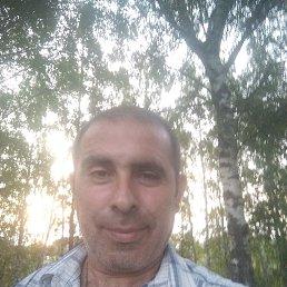 Толя, 44 года, Тула