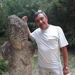Алекпер, 68 лет, Новая Каховка