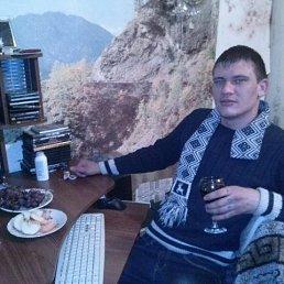 Денис, 28 лет, Саратов