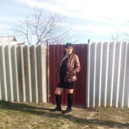 Евгения, 41 год, Волгоград
