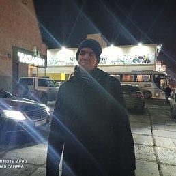 Никита, 22 года, Тольятти