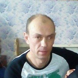 Леха, 43 года, Сокол