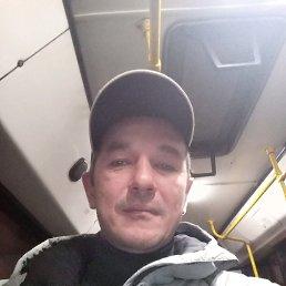 Сергей, 44 года, Пестрецы