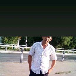 Михаил, 40 лет, Колывань