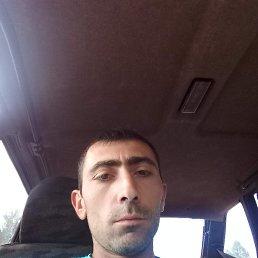 Миша, 32 года, Волоколамск