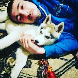 Ярослав, 29 лет, Косов