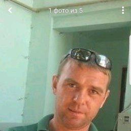 Александр, 40 лет, Льгов