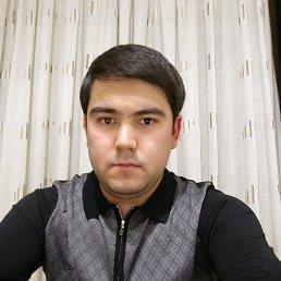 Баха, 28 лет, Солнечногорск