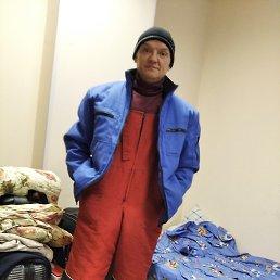 Денис, 41 год, Карачев