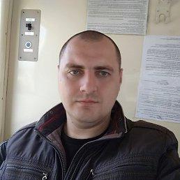 Андрей, 28 лет, Калинковичи