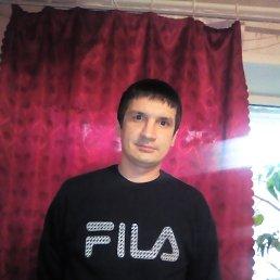 Роман, 29 лет, Смоленск