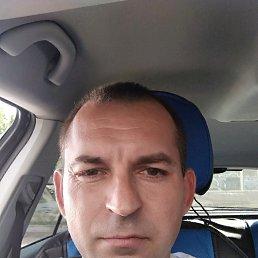 Александр, 41 год, Мелитополь
