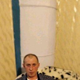 Дима, 45 лет, Ирбит