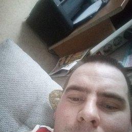 Сергей, 29 лет, Малино