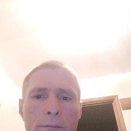 Сергей, 43 года, Жабинка
