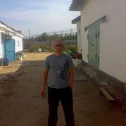 александр, 42 года, Богородицк