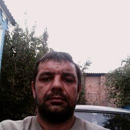 Олег, 40 лет, Погребище